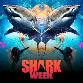 shark-week-000
